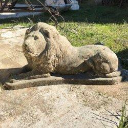 LION COUCHE DROIT PR H28